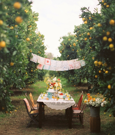 The idea of romantic design outdoor dining room in orange groves
